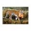 Чемодан на колесиках Trunki Тигр
