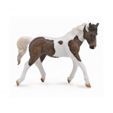 Лошадь Кёрли Collecta, кобыла