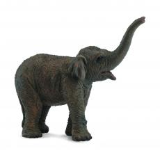 Азиатский слонёнок Collecta