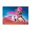Набор Playmobil Марла и Дел с Пегасом